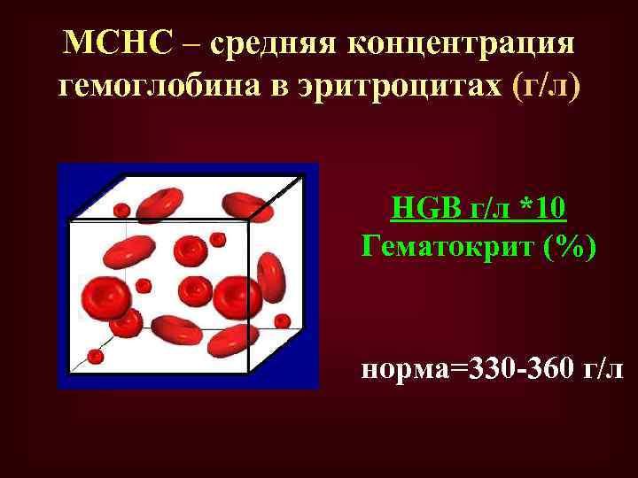 MCHC – средняя концентрация гемоглобина в эритроцитах (г/л) HGB г/л *10 Гематокрит (%) норма=330