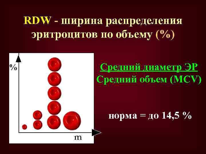 RDW - ширина распределения эритроцитов по объему (%) Средний диаметр ЭР Средний объем (MCV)