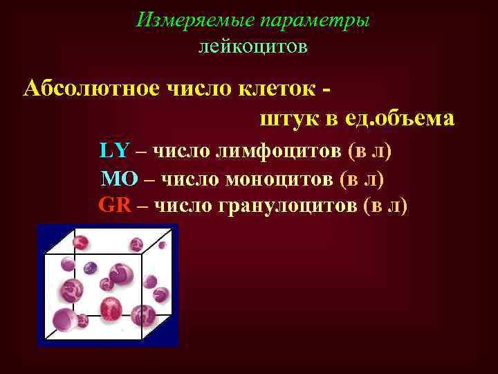 Измеряемые параметры лейкоцитов Абсолютное число клеток штук в ед. объема LY – число лимфоцитов