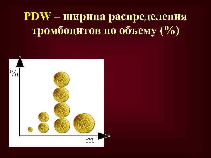 PDW – ширина распределения тромбоцитов по объему (%) % m