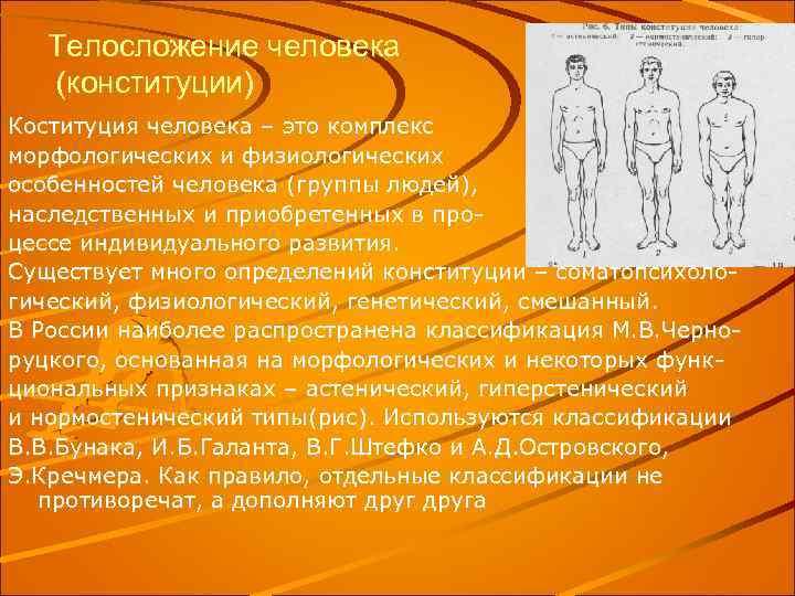 Телосложение человека (конституции) Коституция человека – это комплекс морфологических и физиологических особенностей человека (группы
