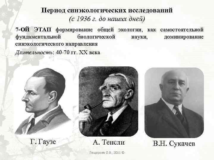 Период синэкологических исследований (с 1936 г. до наших дней) 7 -ОЙ ЭТАП формирование общей