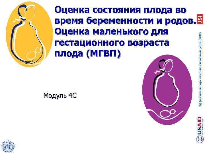 Модуль 4 С Эффективная перинатальная помощь и уход (ЭПУ) Оценка состояния плода во время
