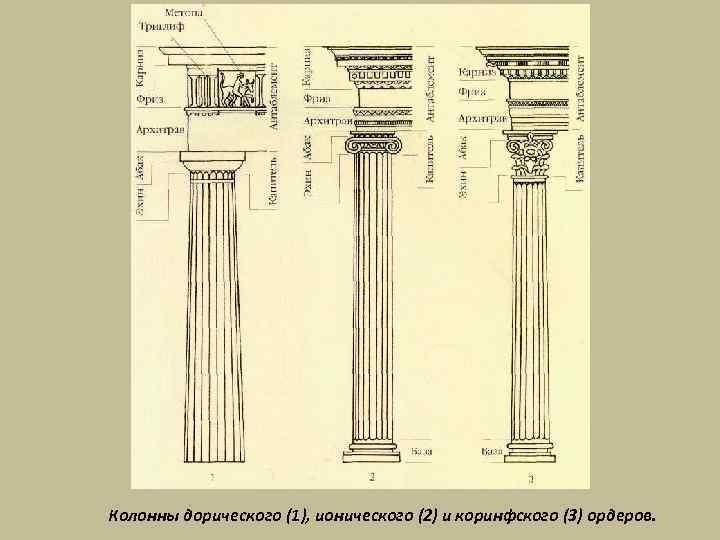 Колонны дорического (1), ионического (2) и коринфского (3) ордеров.