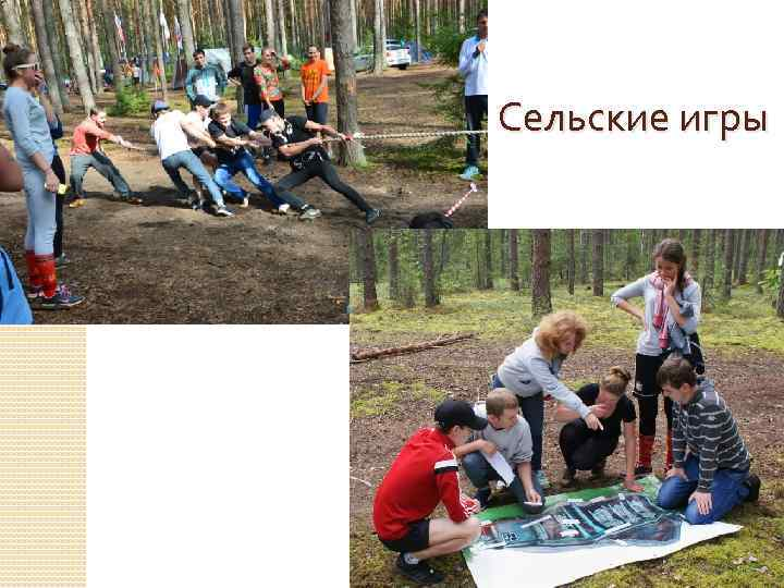 Сельские игры