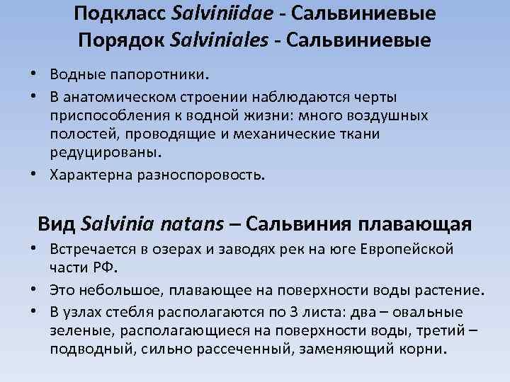 Подкласс Salviniidae - Сальвиниевые Порядок Salviniales - Сальвиниевые • Водные папоротники. • В анатомическом