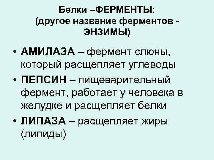 Белки –ФЕРМЕНТЫ: (другое название ферментов ЭНЗИМЫ) • АМИЛАЗА – фермент слюны, который расщепляет углеводы
