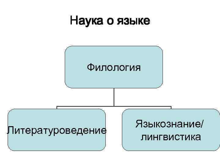 Наука о языке Филология Литературоведение Языкознание/ лингвистика