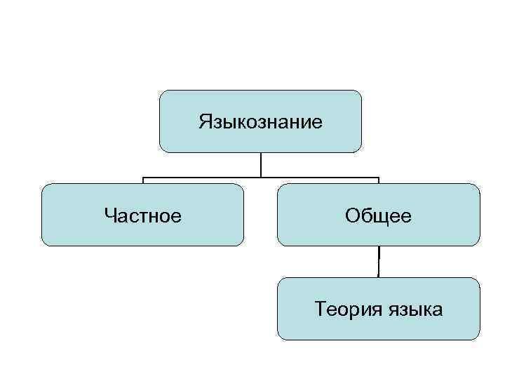 Языкознание Частное Общее Теория языка