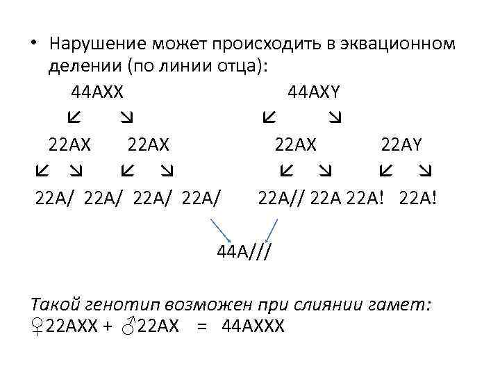 • Нарушение может происходить в эквационном делении (по линии отца): 44 АХХ 44