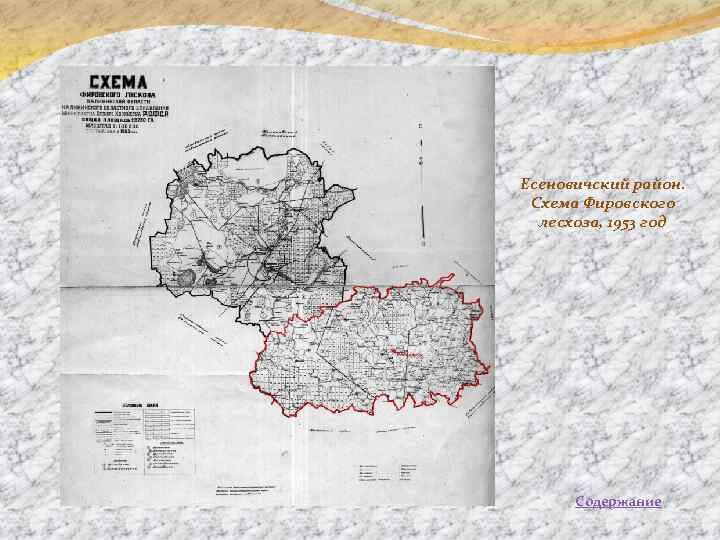 Есеновичский район. Схема Фировского лесхоза, 1953 год Содержание