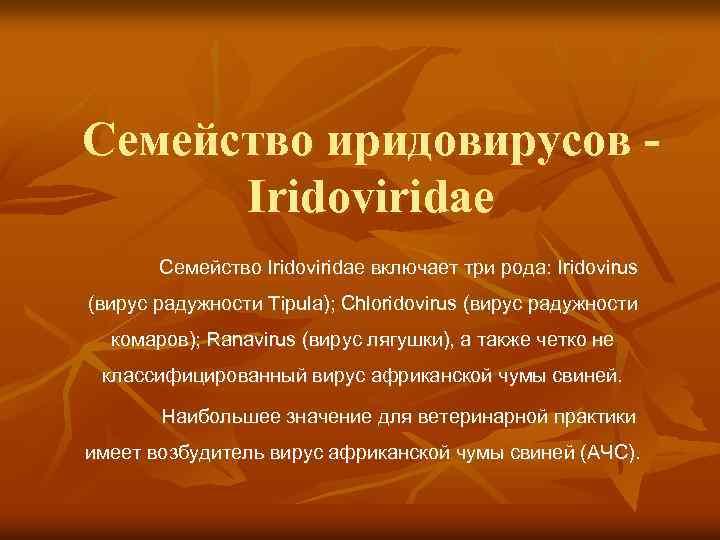 Семейство иридовирусов Iridoviridae Семейство Iridoviridae включает три рода: Iridovirus (вирус радужности Tipula); Chloridovirus (вирус