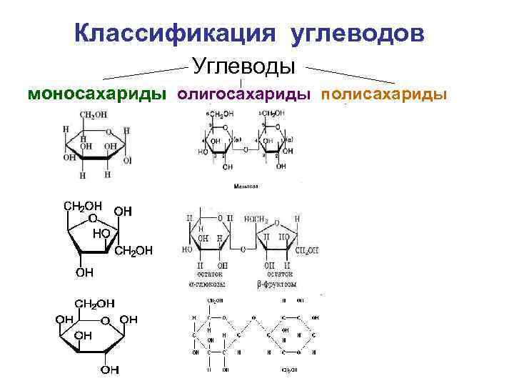 Классификация углеводов Углеводы моносахариды олигосахариды полисахариды