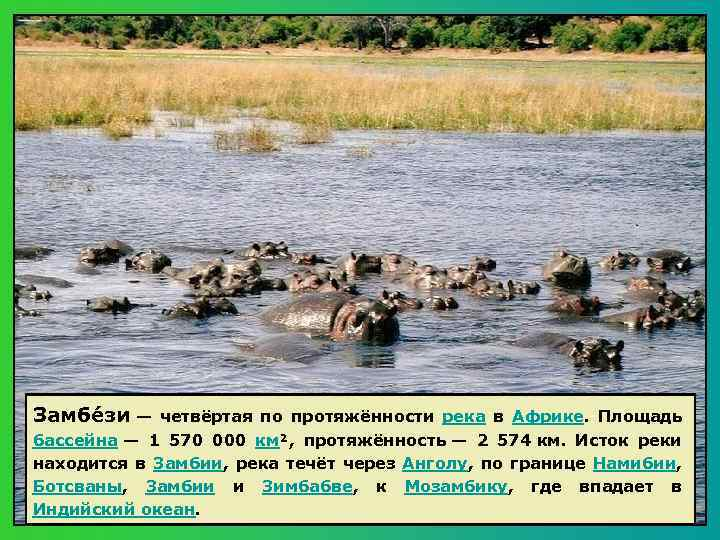 Замбе зи — четвёртая по протяжённости река в Африке. Площадь бассейна — 1 570