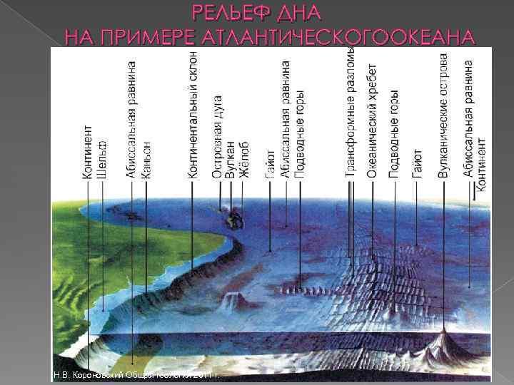 РЕЛЬЕФ ДНА НА ПРИМЕРЕ АТЛАНТИЧЕСКОГООКЕАНА Н. В. Короновский Общая геология 2011 г.