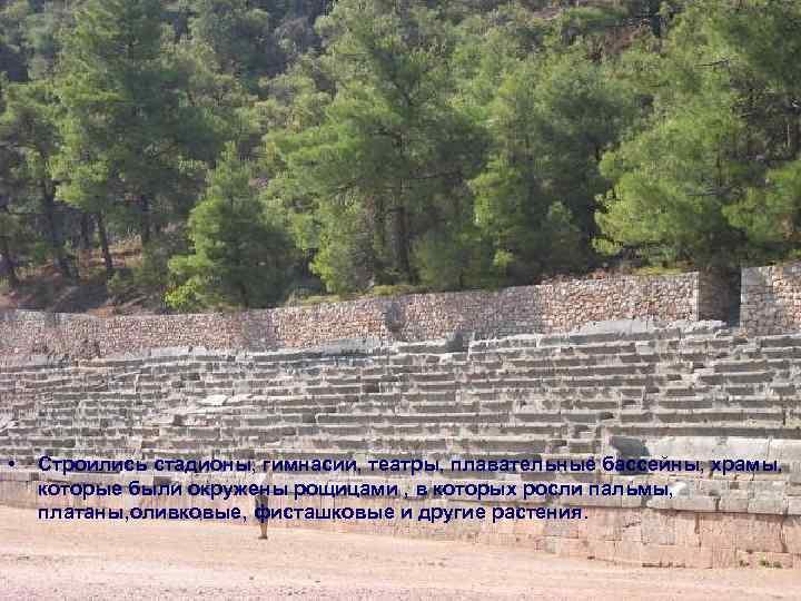 • Строились стадионы, гимнасии, театры, плавательные бассейны, храмы, которые были окружены рощицами ,
