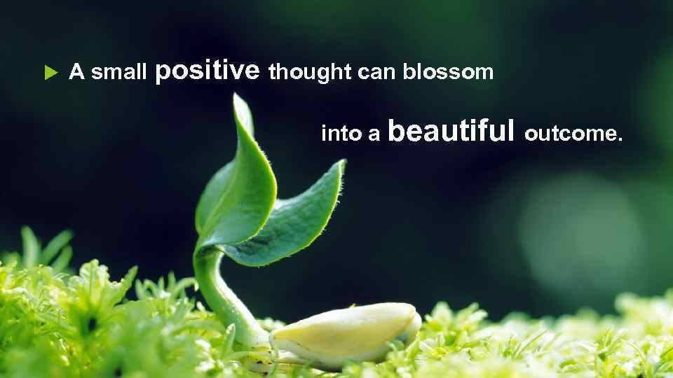 A small positive thought can blossom into a beautiful outcome.