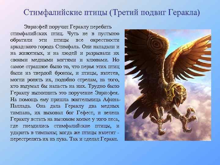 Стимфалийские птицы (Третий подвиг Геракла) Эврисфей поручил Гераклу перебить стимфалийских птиц. Чуть не в