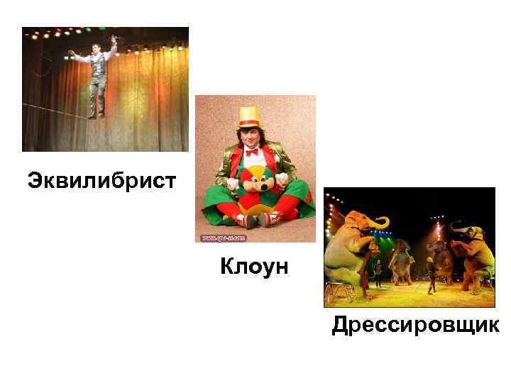 Эквилибрист Клоун Дрессировщик
