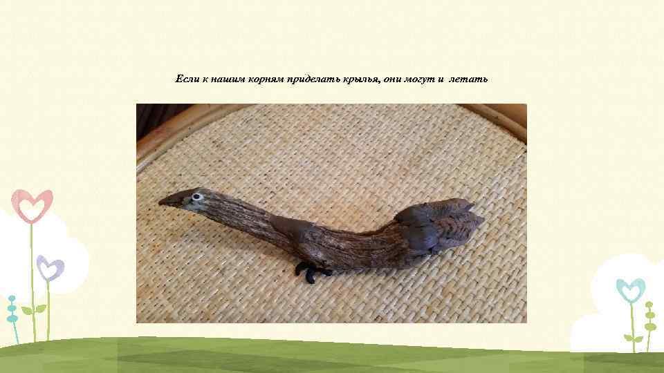 Если к нашим корням приделать крылья, они могут и летать