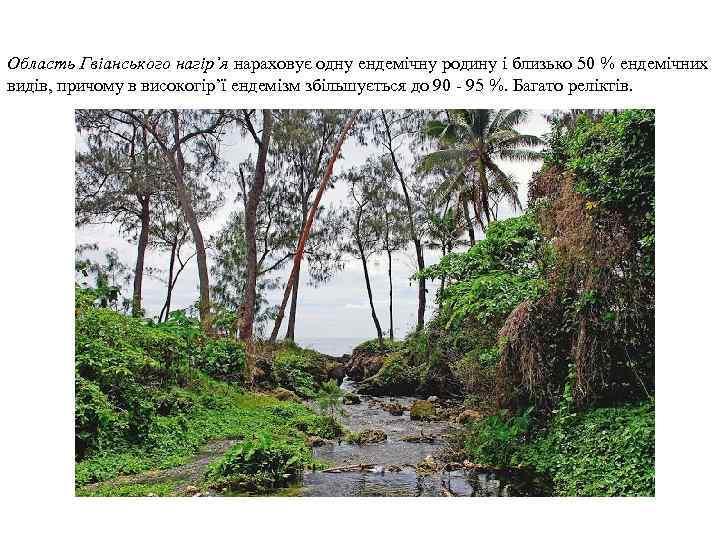 Область Гвіанського нагір'я нараховує одну ендемічну родину і близько 50 % ендемічних видів, причому