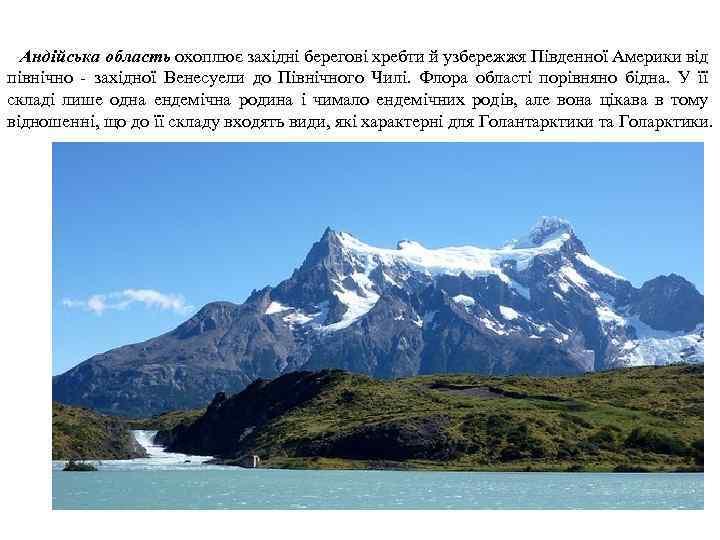 Андійська область охоплює західні берегові хребти й узбережжя Південної Америки від північно - західної