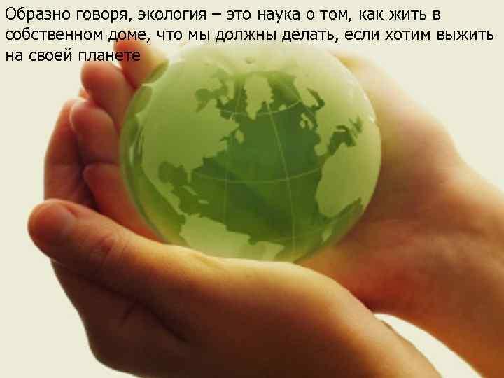 Образно говоря, экология – это наука о том, как жить в собственном доме, что