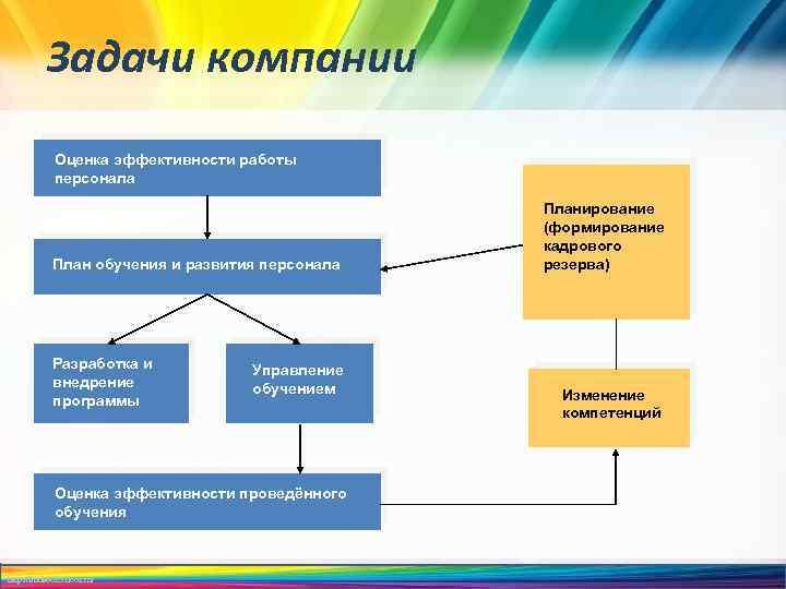 Задачи компании Оценка эффективности работы персонала План обучения и развития персонала Разработка и внедрение