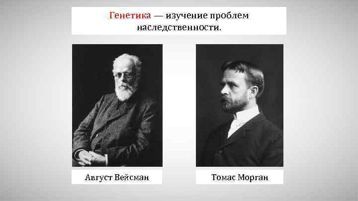 Генетика — изучение проблем наследственности. Август Вейсман Томас Морган
