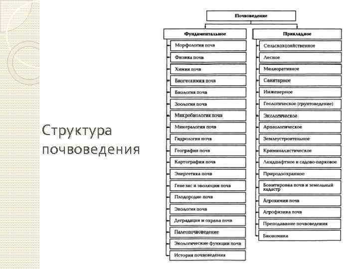 Структура почвоведения