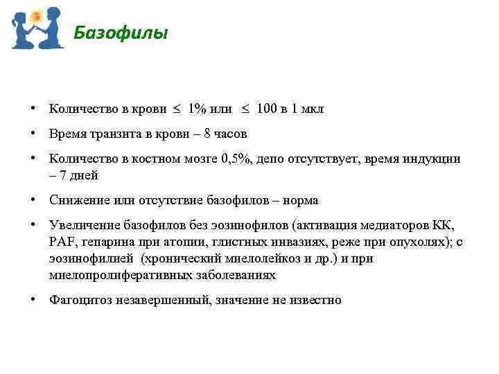 Базофилы • Количество в крови 1% или 100 в 1 мкл • Время транзита
