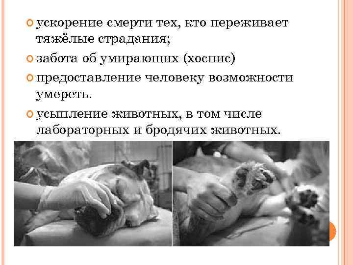 ускорение смерти тех, кто переживает тяжёлые страдания; забота об умирающих (хоспис) предоставление человеку