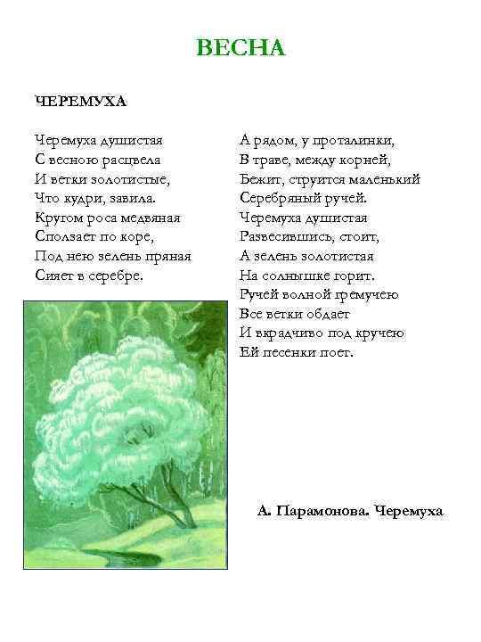 Картинки с черемухой с цитатами из стихотворению есенина черемуха