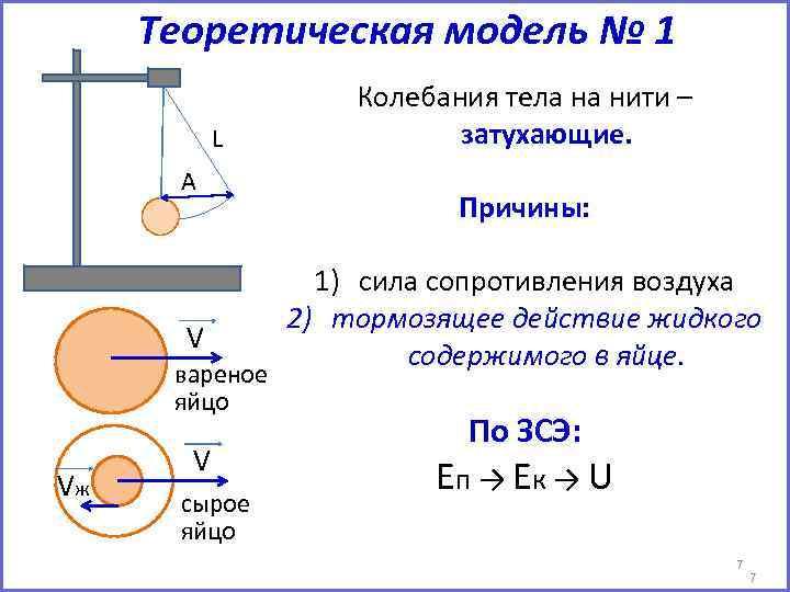 Теоретическая модель № 1 L А V вареное яйцо Vж V сырое яйцо Колебания