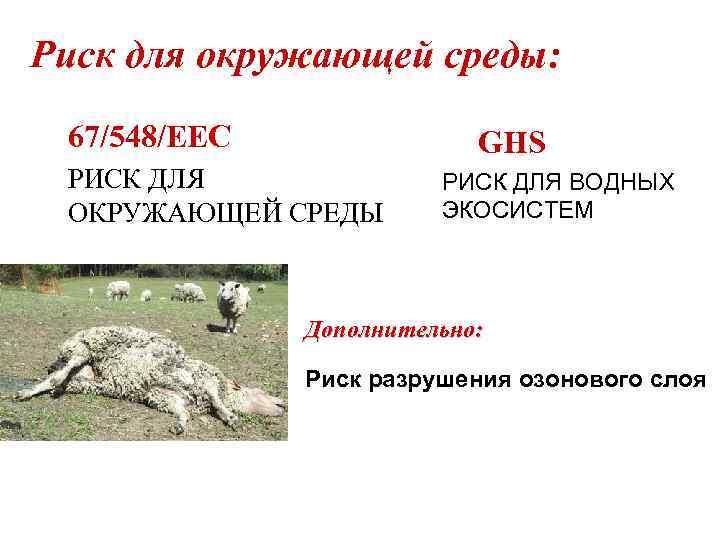 Риск для окружающей среды: 67/548/EEC GHS РИСК ДЛЯ ОКРУЖАЮЩЕЙ СРЕДЫ РИСК ДЛЯ ВОДНЫХ ЭКОСИСТЕМ