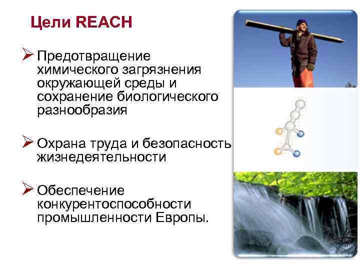Цели REACH Ø Предотвращение химического загрязнения окружающей среды и сохранение биологического разнообразия Ø Охрана