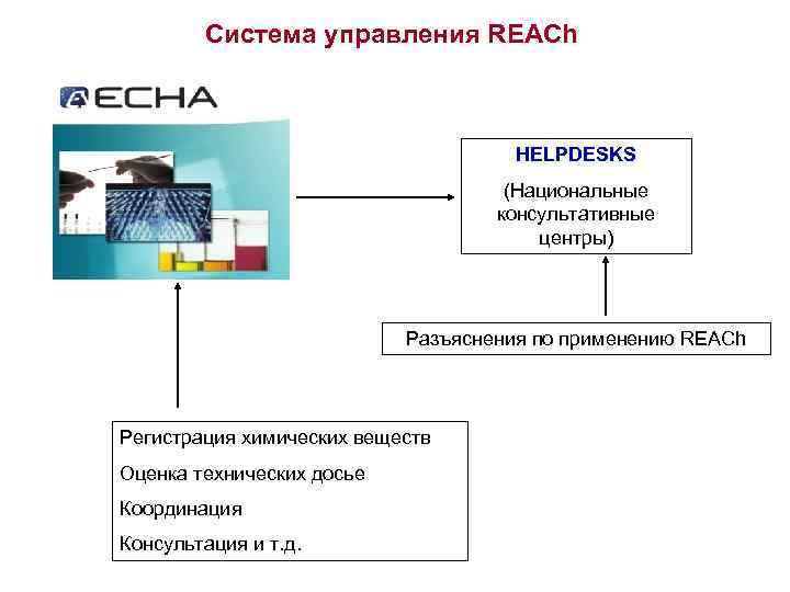 Система управления REACh HELPDESKS (Национальные консультативные центры) Разъяснения по применению REACh Регистрация химических веществ