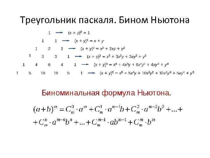 Треугольник паскаля. Бином Ньютона