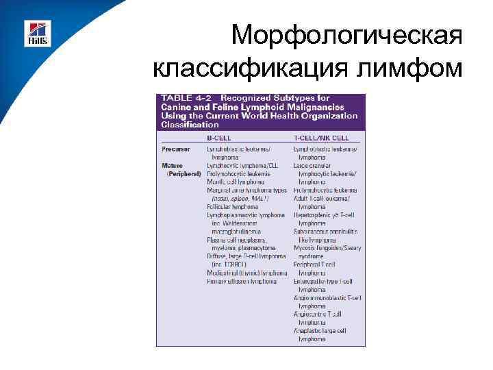 Морфологическая классификация лимфом