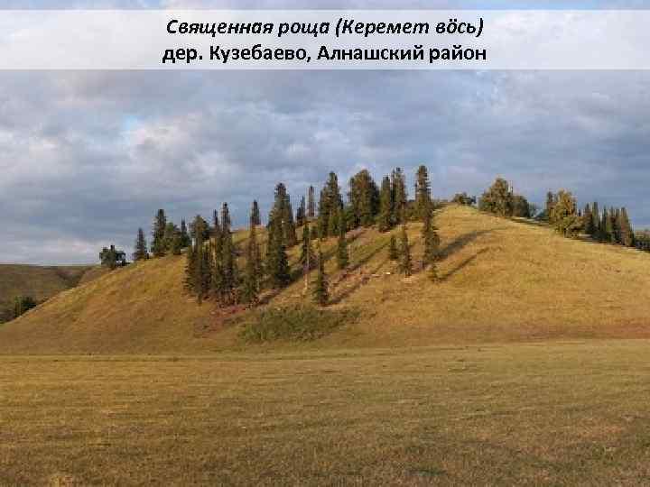 Священная роща (Керемет вöсь) дер. Кузебаево, Алнашский район