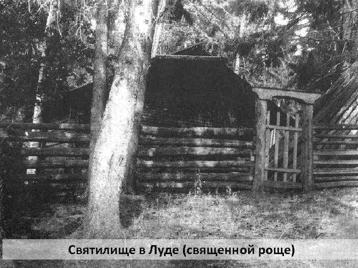 Святилище в Луде (священной роще)