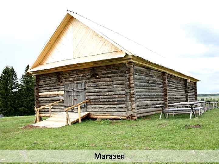 Магазея