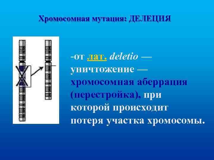 Хромосомная мутация: ДЕЛЕЦИЯ -от лат. deletio — уничтожение — хромосомная аберрация (перестройка), при которой