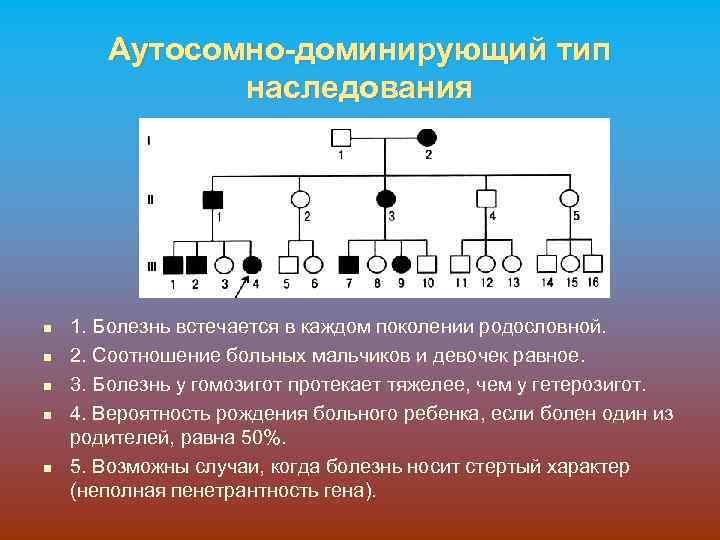 Аутосомно-доминирующий тип наследования n n n 1. Болезнь встечается в каждом поколении родословной. 2.