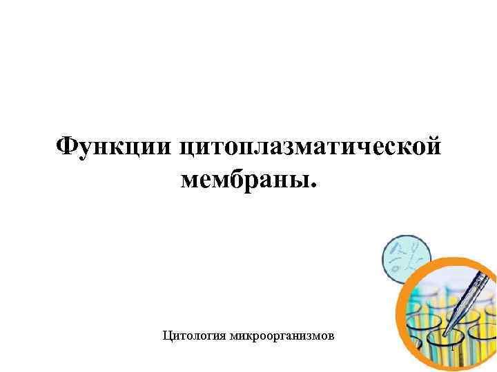 Функции цитоплазматической мембраны. Цитология микроорганизмов 1