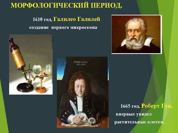 МОРФОЛОГИЧЕСКИЙ ПЕРИОД. 1610 год, Галилео Галилей создание первого микроскопа 1665 год, Роберт Гук, впервые