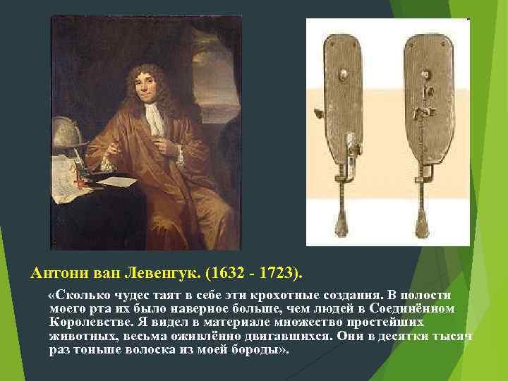 Антони ван Левенгук. (1632 - 1723). «Сколько чудес таят в себе эти крохотные создания.