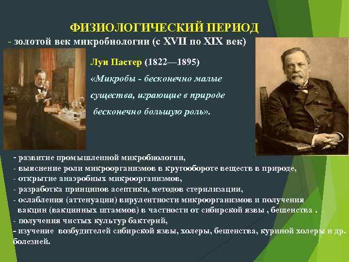 ФИЗИОЛОГИЧЕСКИЙ ПЕРИОД - золотой век микробиологии (с XVII по XIX век) Луи Пастер (1822—