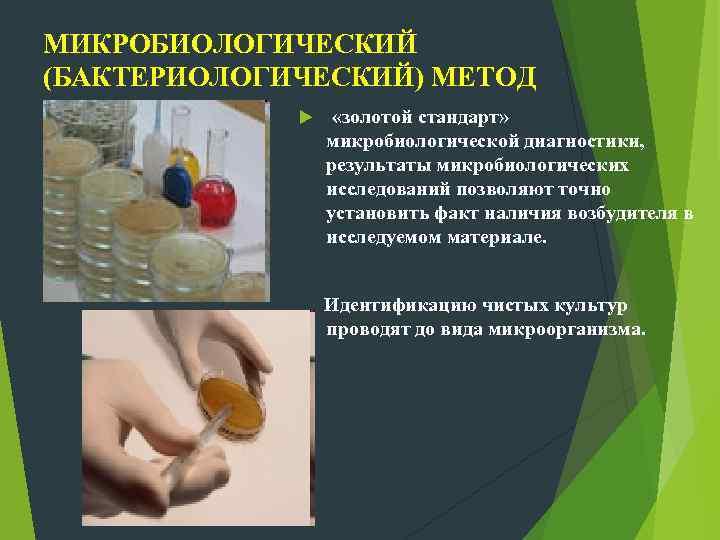 МИКРОБИОЛОГИЧЕСКИЙ (БАКТЕРИОЛОГИЧЕСКИЙ) МЕТОД «золотой стандарт» микробиологической диагностики, результаты микробиологических исследований позволяют точно установить факт