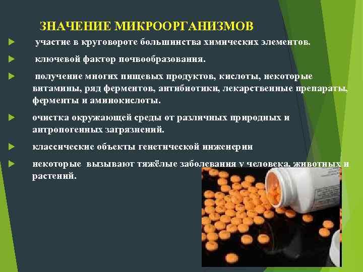 ЗНАЧЕНИЕ МИКРООРГАНИЗМОВ участие в круговороте большинства химических элементов. ключевой фактор почвообразования. получение многих пищевых